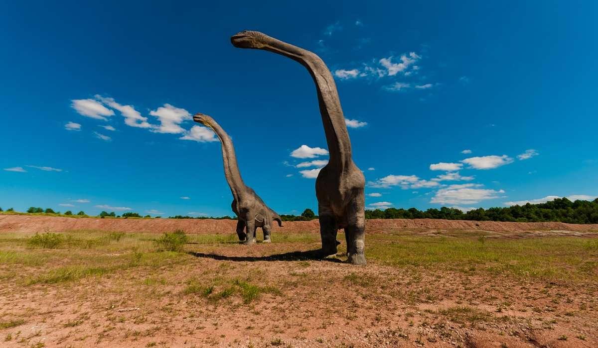 Si stima che il dinosauro più alto e pesante mai esistito sia: