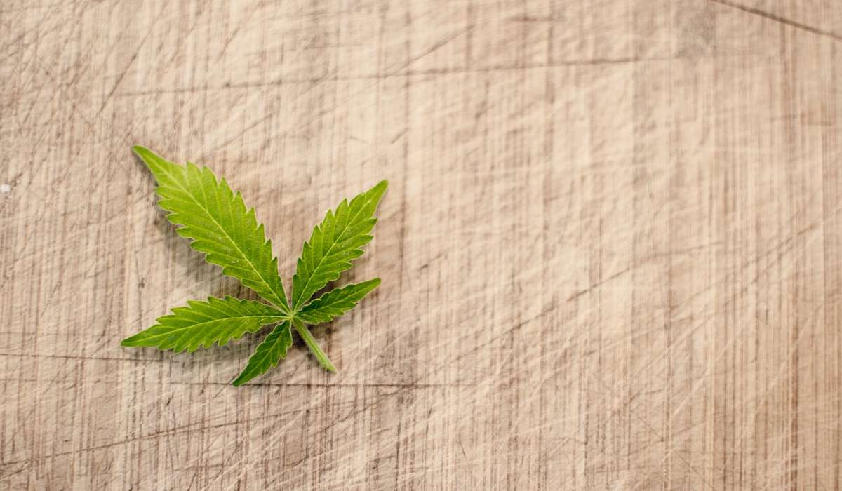 Perché la foglia di canapa, simbolo della marijuana, generalmente non viene fumata?