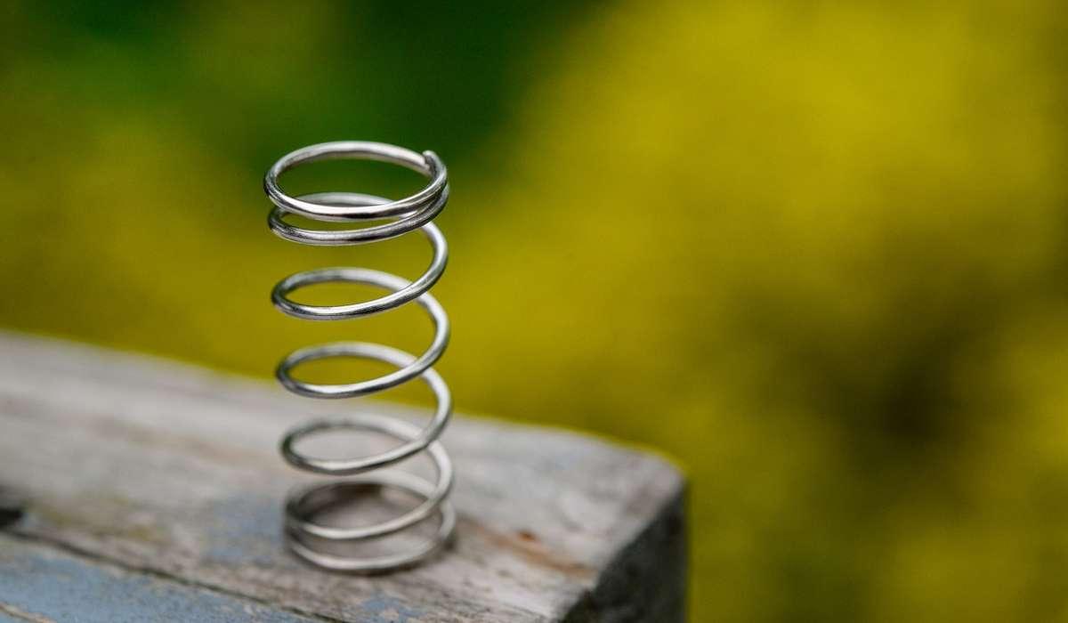 Come è conosciuta la legge che lega l'allungamento di una molla alla forza elastica?