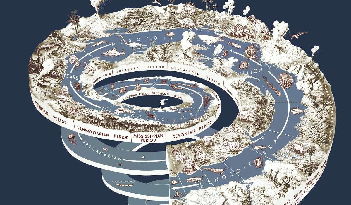 Quale dei due generi si estinse completamente circa 2 milioni di anni fa?