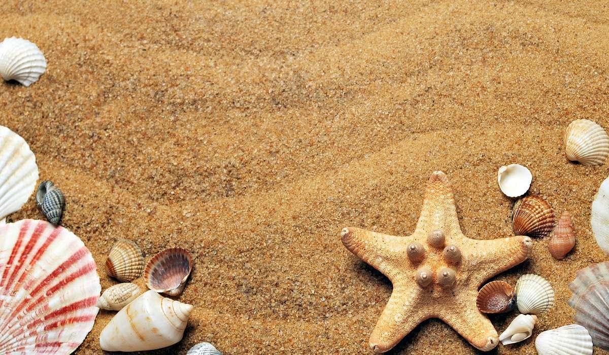 La sabbia può essere considerata una tipologia di: