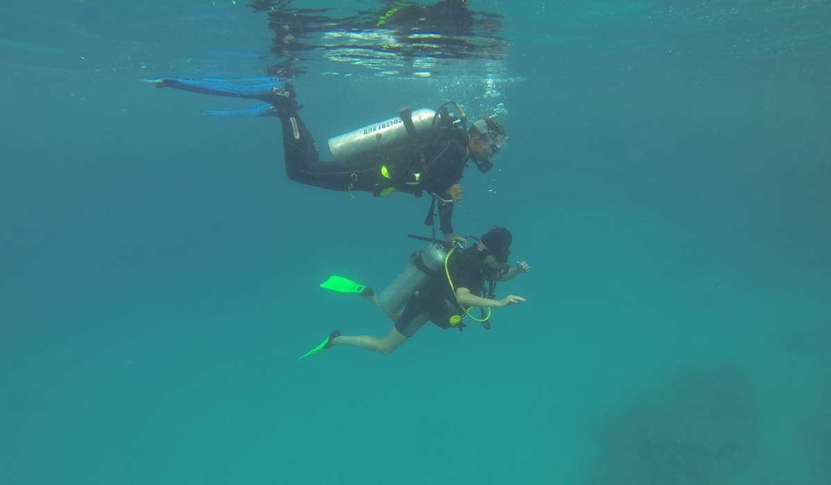 Come sono chiamati gli scienziati che studiano l'oceano?