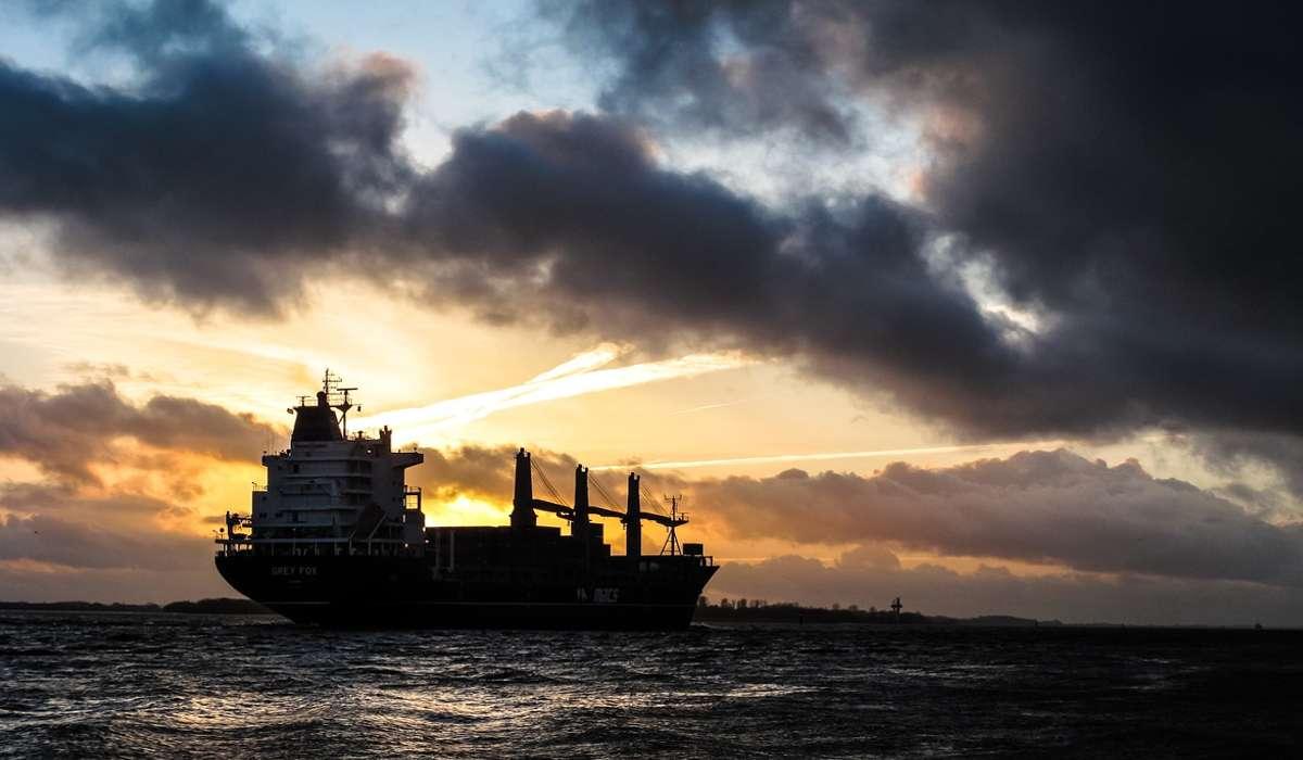 Qual è una delle più grandi risorse contenute nell'oceano?