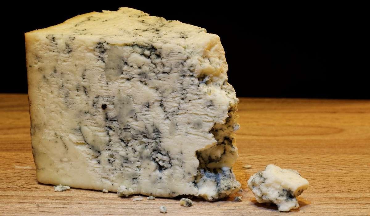 Per produrre quale di questi formaggi si utilizza la crescita di una muffa commestibile?