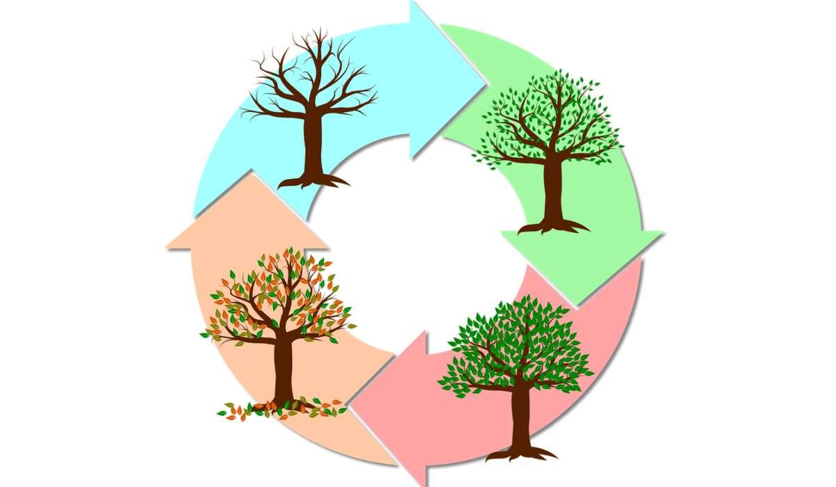 Quale tra queste è la causa principale dell'esistenza delle stagioni?