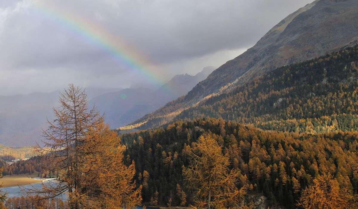 Gli emisferi nord e sud della Terra vivono contemporaneamente le stesse stagioni.