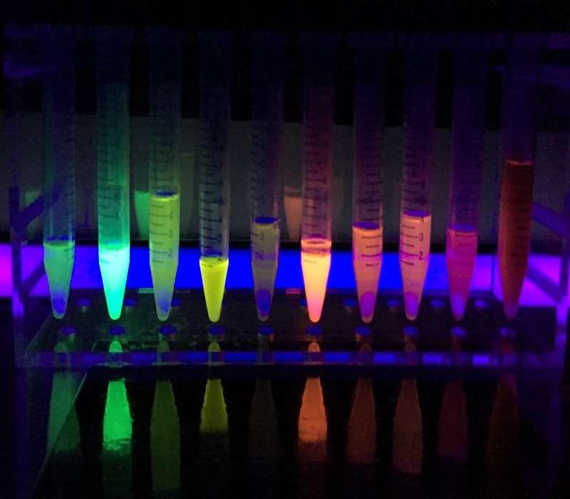 La fluorescenza è la proprietà di una sostanza che emette luce assorbendo una radiazione elettromagnetica.