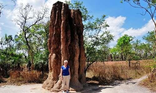 Nido di termiti africane messo a confronto con l'altezza di una persona di media statura. La biomimesi vuole sfruttare caratteristiche di questi nidi per rendere più efficienti gli edifici.