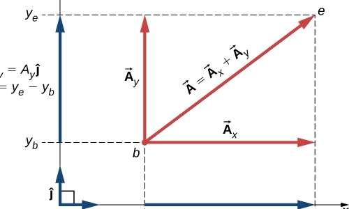 Per capire l'esperimento di Oersted si deve sapere che il campo magnetico è una grandezza vettoriale e si somma vettorialmente con il metodo del parallelogramma