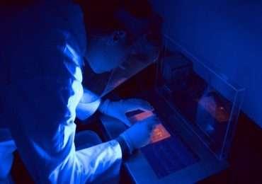 Elettroforesi di DNA