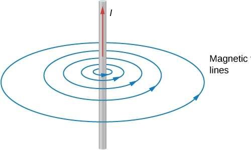Campo magnetico del filo infinito nell'Esperimento di Oersted con le sue linee di campo