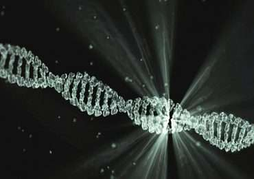 clonaggio genico