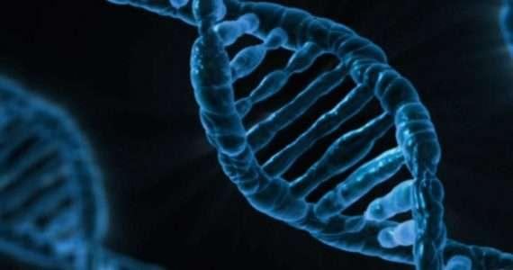 La terapia genica utilizza il DNA per curare le malattie genetiche