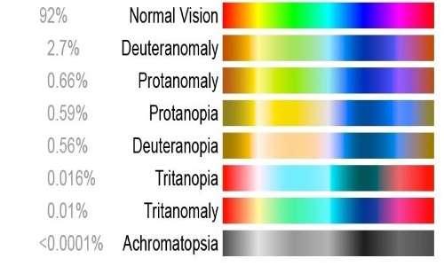 Il daltonismo è legato a una mutazione sul cromosoma X, per questo è più presente negli uomini.