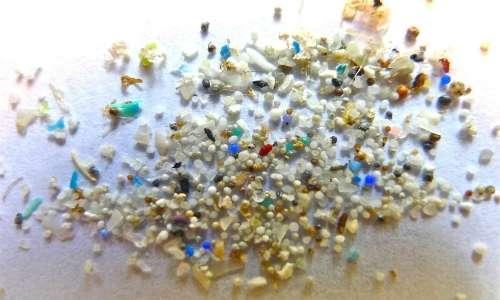 Le isole di plastica contengono grandi quantità di microplastiche.