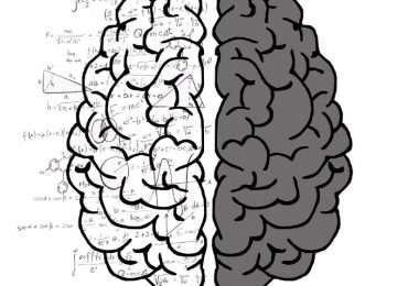 emisfero destro e sinistro non collegati in pazienti split-brain