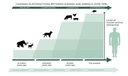 L'aumento di zoonosi negli ultimi tempi potrebbe essere causato dalla sempre maggior intrusione dell'uomo nell'ambiente.