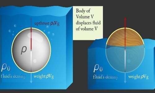 Perché le navi galleggiano? Grazie al principio di Archimede, secondo cui ogni corpo immerso in un fluido riceve una spinta verticale dal basso verso l'alto, uguale per intensità al peso del fluido spostato.
