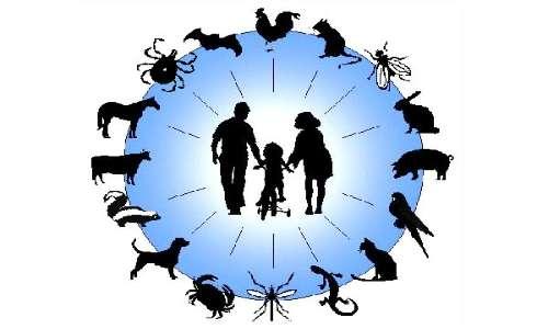 Le zoonosi sono malattie infettive che vengono trasmesse dagli animali all'uomo.