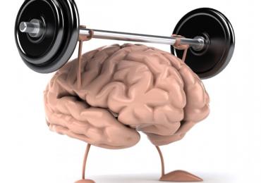 l'osteocalcina è ormone fondamentale per l'esercizio fisico e per il cervello