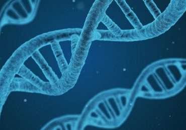 Il biohacking permette di modificare la chimica e la fisiologia del nostro corpo.