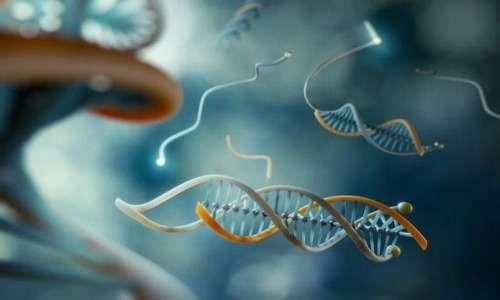 uno dei settori su cui interverrano le nanotecnologie sarà sicuramente la nanomedicina