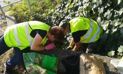 I volontari che hanno partecipato a Save the Planet a San Bonifacio (VR).