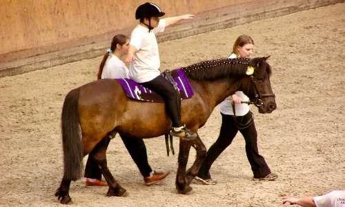 Sembra che l'ippoterapia risalga alla Grecia antica. Ippocrate di Coo consigliava le attività equestri come metodo efficacie in caso di ansia e insonnia.