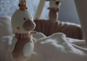 La sindrome della morte in culla viene chiamata anche sindrome della morte improvvisa del lattante.