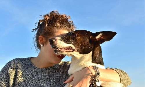 L'ippoterapia costituisce una branca specifica della pet therapy. Il rapporto con un animale come il cavallo o il cane sembra essere molto utile per il trattamento di diversi disturbi psicofisici.