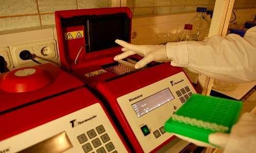 Fase di caricamento di DNA nel termociclatore per fare la PCR, utile ai successivi step di generazione degli aptameri.