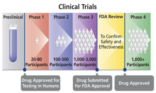 Fasi di cui si compone un clinical trial.