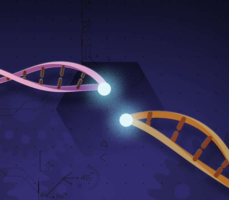 Nel 2020, CRISPR ha conquistato il Premio Nobel per la chimica.