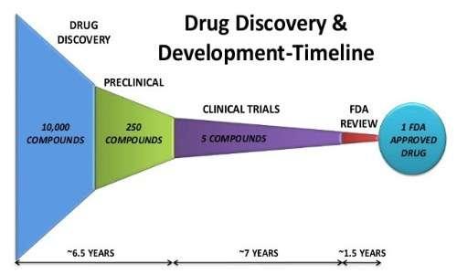 Timeline della sperimentazione: un clinical trial dura mediamente 7 anni.
