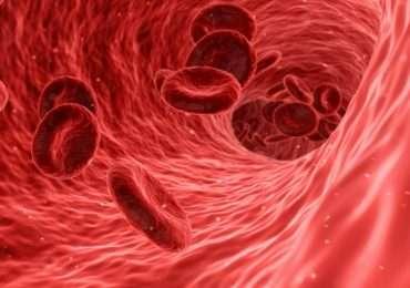 """Ippocrate definì la malaria come la """"febbre intermittente""""."""