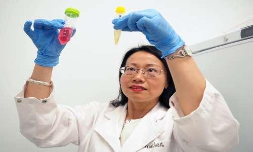 Scienziata che durante la conduzione di uno studio clinico fa un confronto di due soluzioni con all'interno la molecola in esame.
