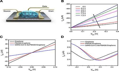Test-rapido-coronavirus tramite biosensore. Esperimenti amperometrici