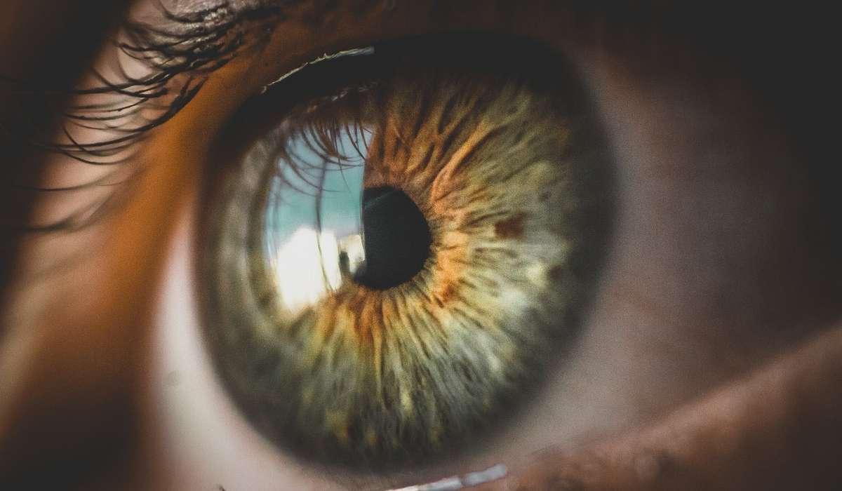 Quale colore viene percepito meglio dall'occhio umano?