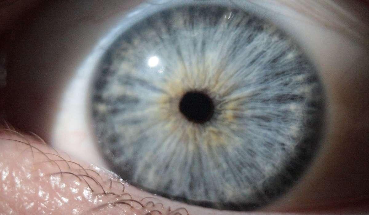 In condizioni di scarsa luminosità, cosa aiuta l'occhio umano a percepire le immagini?