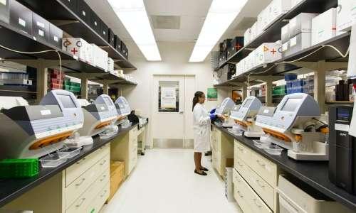Nel 2009, il Premio Nobel per la medicina è stato assegnato alla scoperta dei telomeri.