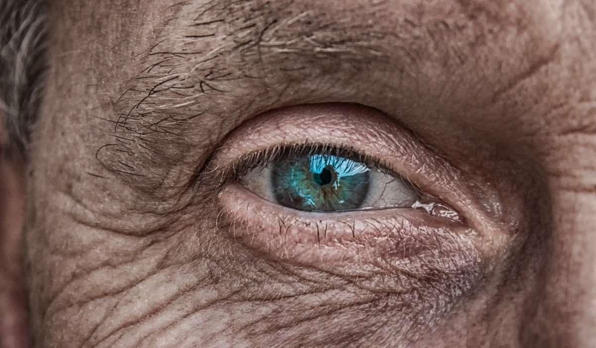 Nell'occhio umano è presente la melanina?