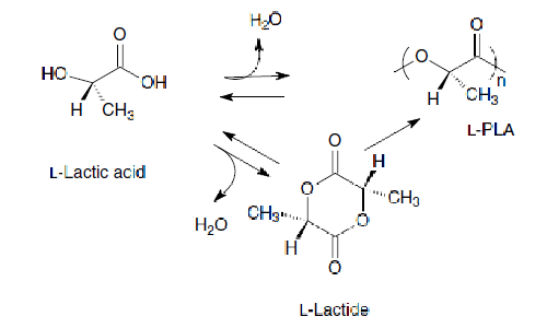 Per produrre acido polilattico si sfrutta la fermentazione con uno schema di reazione semplificativo. del genere.