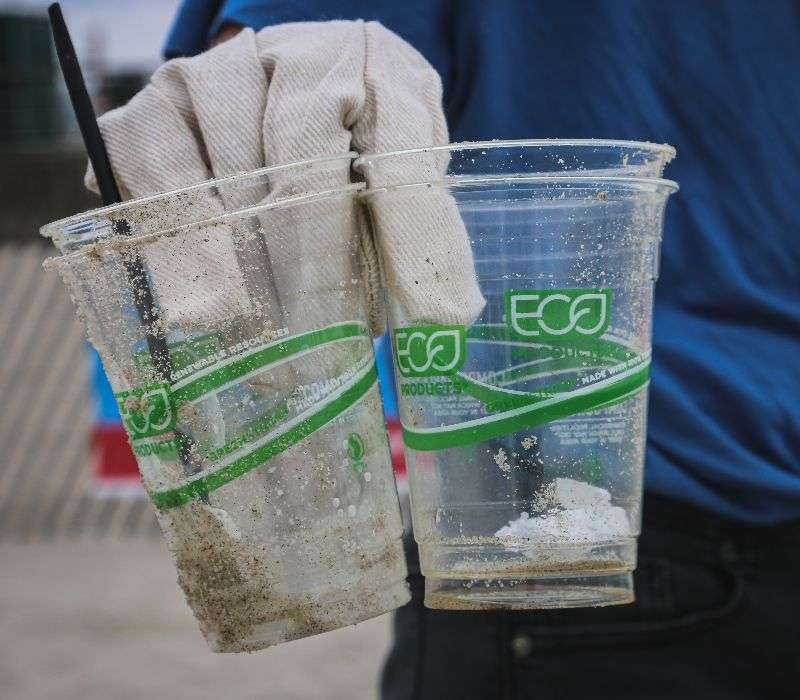 Acido polilattico viene sfruttato per produrre bioplastiche, ossia materiali che presentano le stesse proprietà meccaniche delle plastiche ma sono biodegradabili, come i bicchieri in figura.
