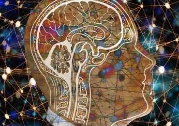 Coscienza, come funziona? Cos'è la «coscienza»?