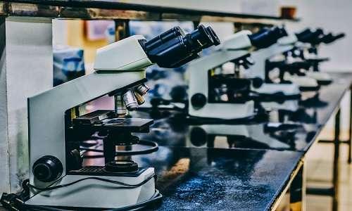 Tanti sono ancora gli studi da effettuare per far entrare la viroterapia oncolitica in clinica.
