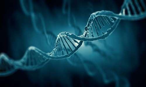 Manipolazione del genoma dei virus oncolitici per rendere più efficace la viroterapia oncolitica.