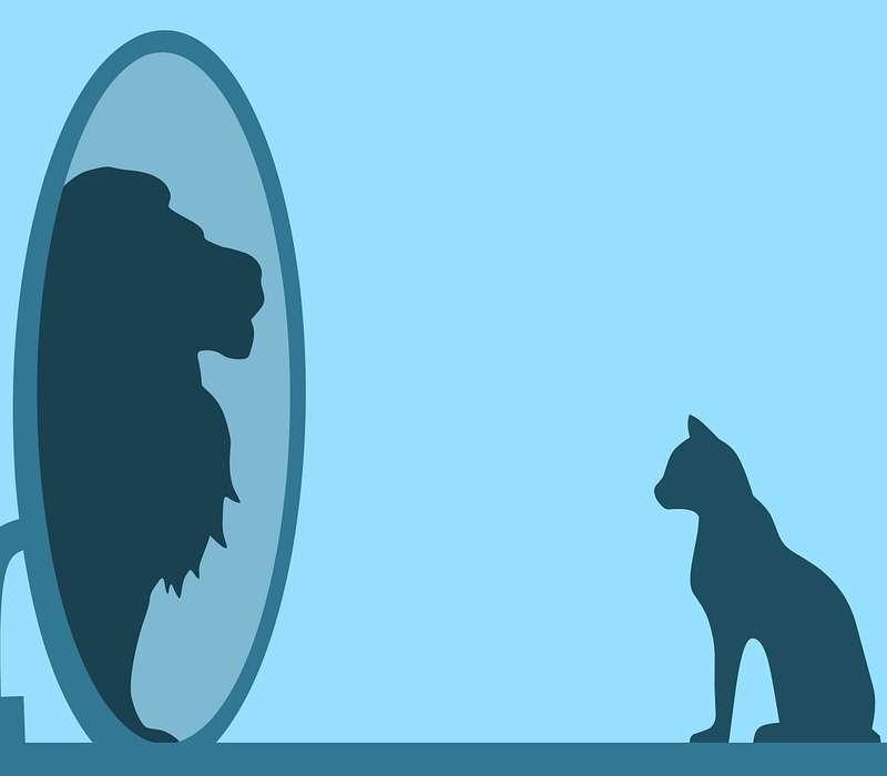 Il narcisismo patologico rende la persona bisognosa di conferme e dipendente dagli altri