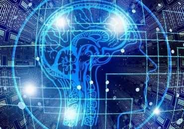 I lobi frontali sono il centro esecutivo del cervello umano.