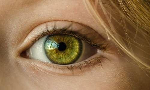 I nuovi robot umanoidi avranno una fovea ben distinta dalla periferia oculare