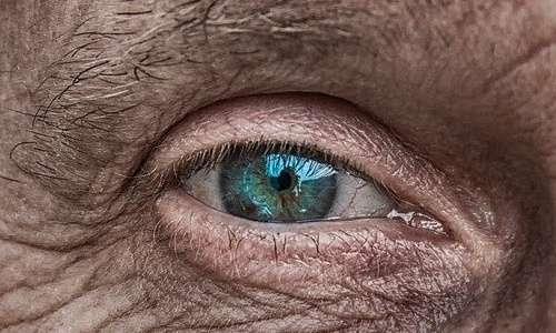 Lo stress ossidativo è alla base delle principali malattie dell'invecchiamento. Inoltre riduce l'attività dell'enzima telomerasi.